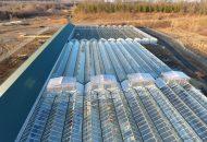 ForwardGro's Greenhouses
